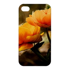 Flowers Butterfly Apple Iphone 4/4s Premium Hardshell Case