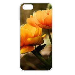 Flowers Butterfly Apple iPhone 5 Seamless Case (White)