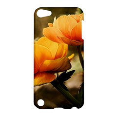 Flowers Butterfly Apple Ipod Touch 5 Hardshell Case