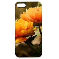 Flowers Butterfly Apple Iphone 5 Hardshell Case With Stand