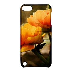 Flowers Butterfly Apple Ipod Touch 5 Hardshell Case With Stand