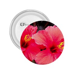 Red Hibiscus 2 25  Button