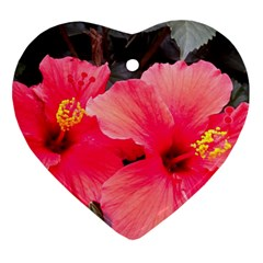 Red Hibiscus Heart Ornament