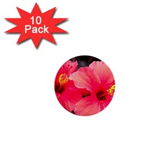 Red Hibiscus 1  Mini Button (10 Pack)