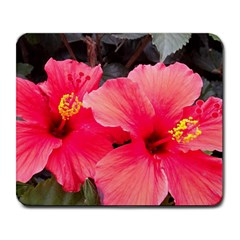 Red Hibiscus Large Mouse Pad (Rectangle)