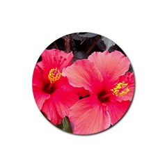 Red Hibiscus Drink Coasters 4 Pack (Round)