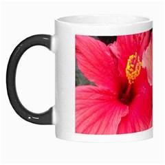 Red Hibiscus Morph Mug