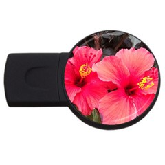 Red Hibiscus 4gb Usb Flash Drive (round)