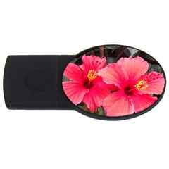 Red Hibiscus 4GB USB Flash Drive (Oval)