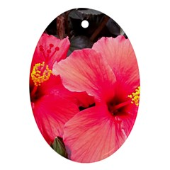 Red Hibiscus Oval Ornament (Two Sides)
