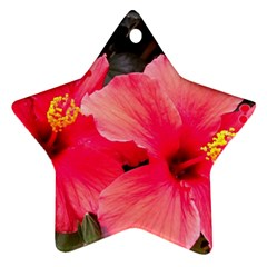 Red Hibiscus Star Ornament (Two Sides)
