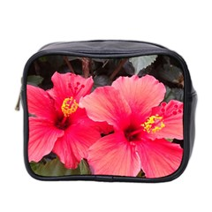 Red Hibiscus Mini Travel Toiletry Bag (two Sides)