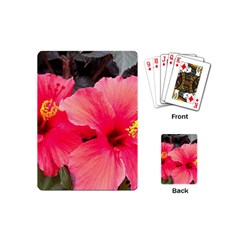 Red Hibiscus Playing Cards (Mini)
