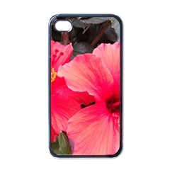 Red Hibiscus Apple iPhone 4 Case (Black)
