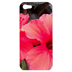 Red Hibiscus Apple iPhone 5 Hardshell Case