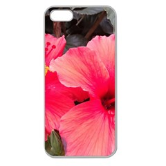 Red Hibiscus Apple Seamless Iphone 5 Case (clear)