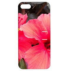Red Hibiscus Apple iPhone 5 Hardshell Case with Stand
