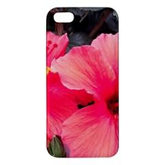 Red Hibiscus iPhone 5 Premium Hardshell Case