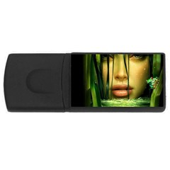 Capture 4GB USB Flash Drive (Rectangle)