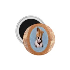 Arn t I Adorable? 1.75  Button Magnet