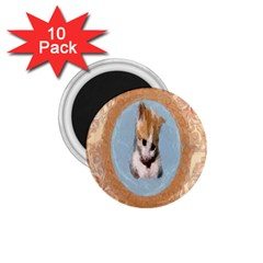 Arn t I Adorable? 1.75  Button Magnet (10 pack)