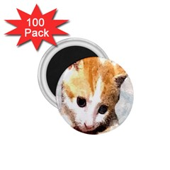 Sweet Face :) 1 75  Button Magnet (100 Pack)