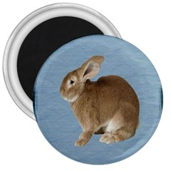 Cute Bunny 3  Button Magnet