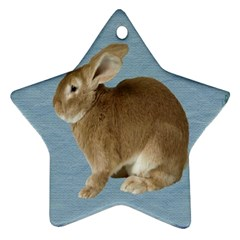 Cute Bunny Star Ornament
