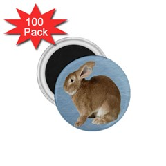Cute Bunny 1 75  Button Magnet (100 Pack)