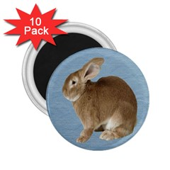 Cute Bunny 2 25  Button Magnet (10 Pack)