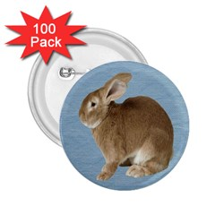 Cute Bunny 2.25  Button (100 pack)