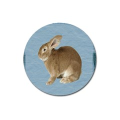 Cute Bunny Magnet 3  (Round)