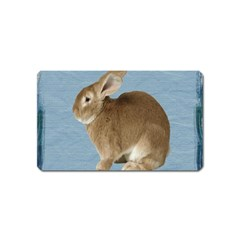 Cute Bunny Magnet (Name Card)