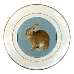 Cute Bunny Porcelain Display Plate