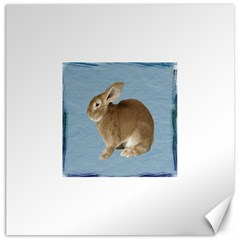 Cute Bunny Canvas 12  x 12  (Unframed)