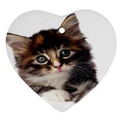 Curious Kitty Heart Ornament