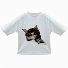 Curious Kitty Baby T-shirt