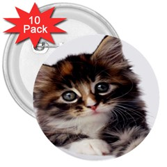 Curious Kitty 3  Button (10 pack)