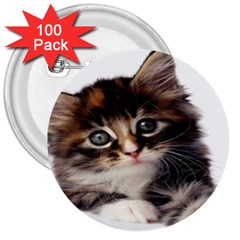 Curious Kitty 3  Button (100 pack)