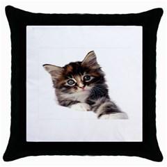 Curious Kitty Black Throw Pillow Case