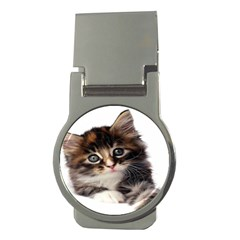 Curious Kitty Money Clip (Round)