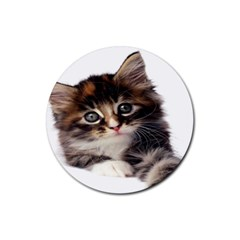Curious Kitty Drink Coaster (Round)
