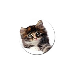 Curious Kitty Golf Ball Marker 4 Pack