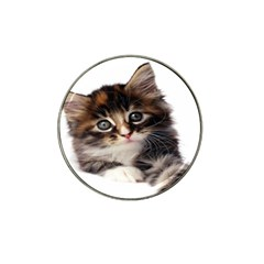 Curious Kitty Golf Ball Marker 4 Pack (for Hat Clip)