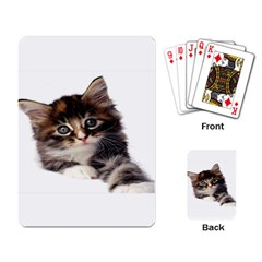 Curious Kitty Playing Cards Single Design
