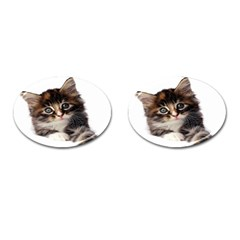 Curious Kitty Cufflinks (oval)