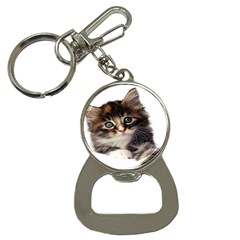 Curious Kitty Bottle Opener Key Chain
