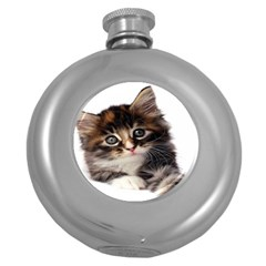Curious Kitty Hip Flask (Round)