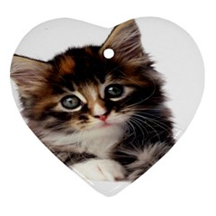 Curious Kitty Heart Ornament (Two Sides)