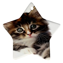Curious Kitty Star Ornament (two Sides)